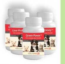 Natural Herbal Medicine for your Pets CANCER & LYME SUPPORT