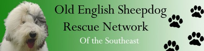OLD ENGLISH SHEEPDOG RESCUE NETWORK OF THE SOUTHEAST