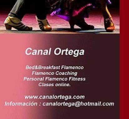 Canal Ortega - Domingo Ortega
