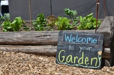 Welcome to your Garden