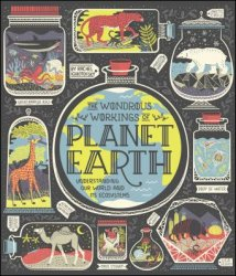 The Wondrous Workings of Planet Earth: Understanding Our World and Its Ecosystems By Rachel Ignotofsky