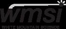 WMSI logo