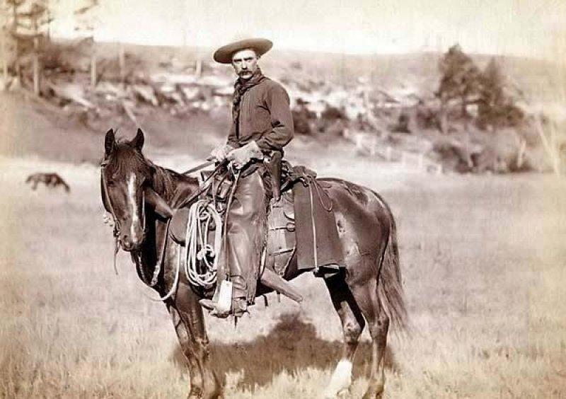 Cowboy 1880
