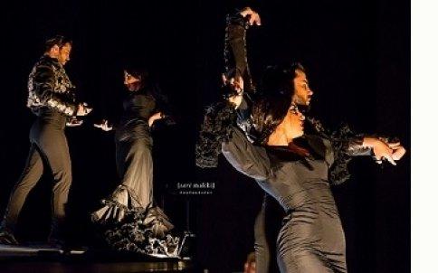 Vida Flamenca on VIMEO